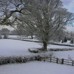 Birch Hill Caravan Club CL in Winter - we are open all year.