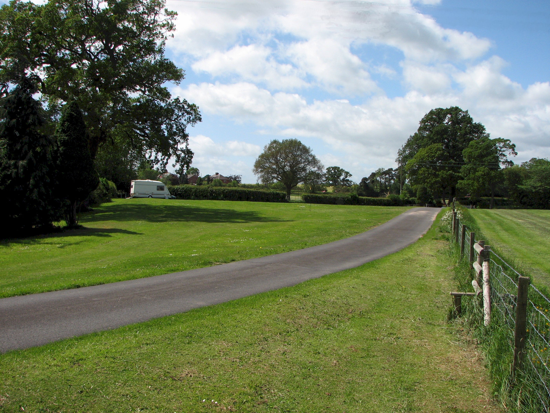 Lower field at Birch Hill